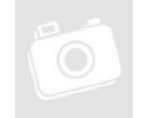 Накладки внутренних порогов Dollex на Mitsubishi ASX 2010-2013
